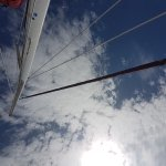 Photo of Marlin Del Rey Sailing Tours