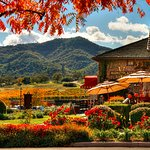 Shopping at The Marketplace at The Estate Yountville