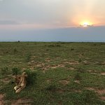 Photo of Paraa Safari Lodge