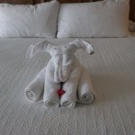 Cute towel animal in our room!