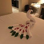 Beautiful stay at the incredible Jaz crystal resort:)❤️❤️❤️