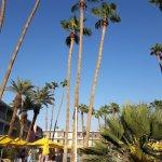 Photo of The Saguaro Palm Springs