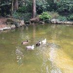 Foto de Parc du Thabor