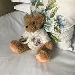 Sloane Square Hotel teddy bear on bed