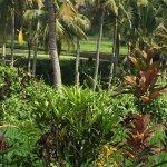 Agung Raka Resort & Villas Foto