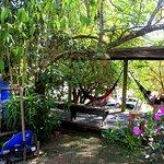 Lindo jardim e algumas redes para os frequentadores