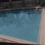 Nice pool but not heated.