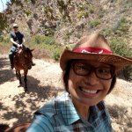 All the Pretty Horses of Baja - Rescue and Rides Foto
