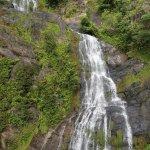 Kuranda Scenic Railway - Waterfall
