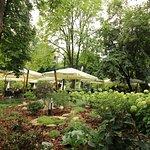 The garden surrounding the restaurant