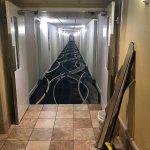Damaged doors, damaged shower walls, unwanted things on the doorway & near Elevators