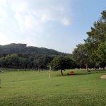 場地和草地