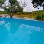 enjoy a swim at our pool overlooking the Mara river