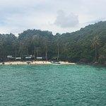 Photo of John's Island Tours