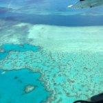 Heart Reef Foto