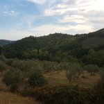 Villa Di Campolungo Agriturismo Foto