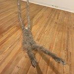 Photo of Dunedin Public Art Gallery