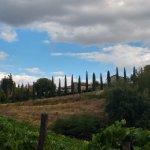 Photo of Borgo Argenina