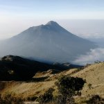 mt. merapi as seen from the top of mt. merbabu