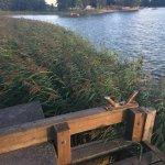dock by lake
