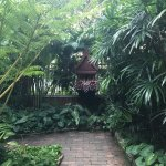 Nice feel of Thai culture