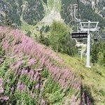 Télésiège lent (1m/s) et fleurs sauvages