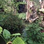 Casa delle Farfalle e Bosco delle Fate di Butterfly Arc