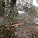 Foto de Akame Shijuhachi Waterfall