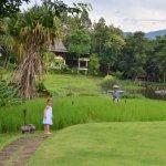 Photo of Lana Thai Villa