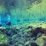 Photo of Dive Iceland - Diving and Snorkeling in Iceland - Day Tours