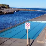 Another rockpool at Clovelly Beach