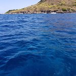 BLUE WATERS - DIVE SPOT CANDY LAND