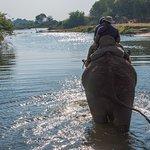 Peaceful walk in the water