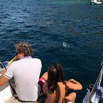 Photo of Sailing 5 Terre - Day Tours