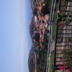Photo of City Sightseeing Funchal