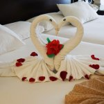Towel art - just wonderful
