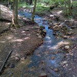 walking trail at Nazareth Borough park