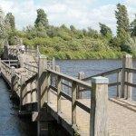 Bridge from Landsmeer