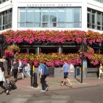 Pub exterior. Summer flowers