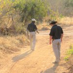 Photo de Idube Game Reserve Lodge