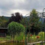 Garten mit Bioteich