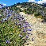 McGinty Mountain Trailhead