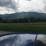 You have to drive up into the mountains, or you miss breathtaking beauty in Tennessee.  Start at