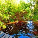 River ponds