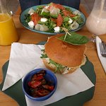 Salmon and goat cheese salad a/ grilled chicken sandwich