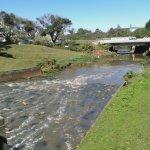 Photo of Parque Barigui