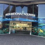Photo of Malta National Aquarium
