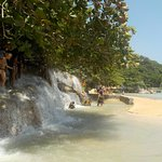 Photo of Dunn's River Falls and Park