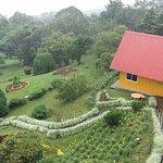 Cabaña familiar y jardín