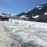 On the ice:)